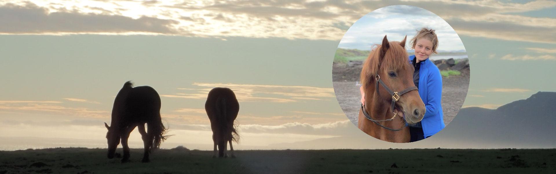 Riblogg om ridresor, islandshästar och Island
