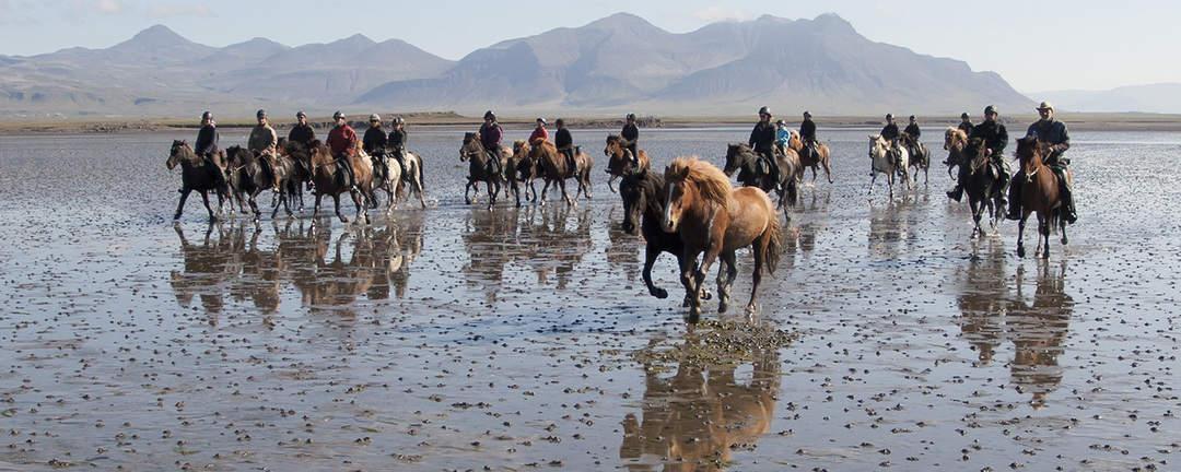 Rider på stranden i Löngufjörur