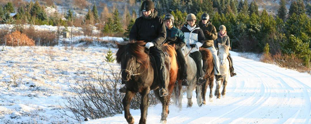 Rider på väg till Reykjavik på Island