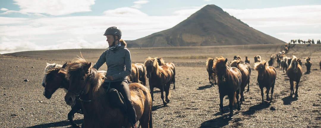 En av de bästa ridresorna genom vulkaniska landformationer på islandshäst