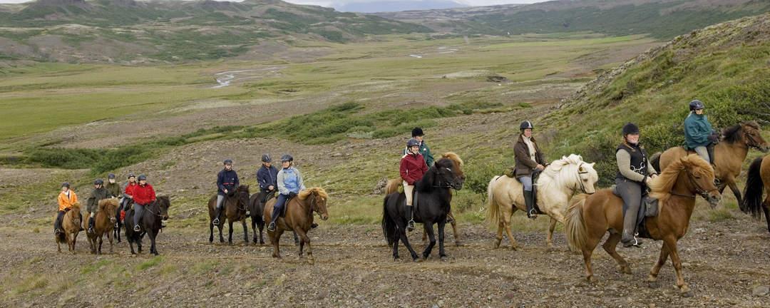 Rider på islandshästar upp till ljungheden Hrunaheiðar på Island