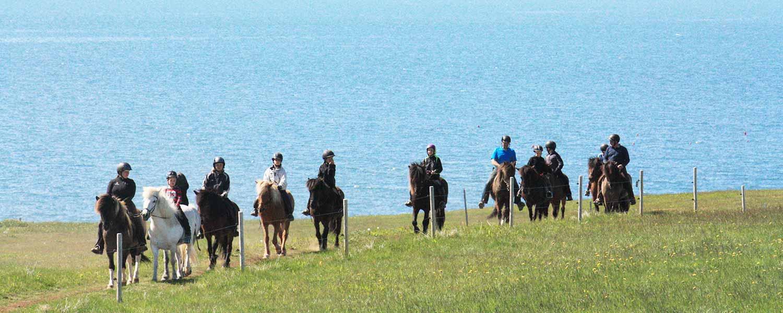 Rider vid sjön Mývatn med sitt rika fågelliv och fantastiskt vackra landskap