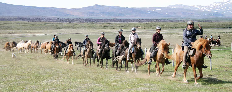 Rider på islandshästar mot fjällen och fjällstugan Þeistareykir