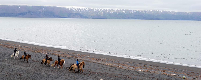 Ridresa vid norra ishavet på Island