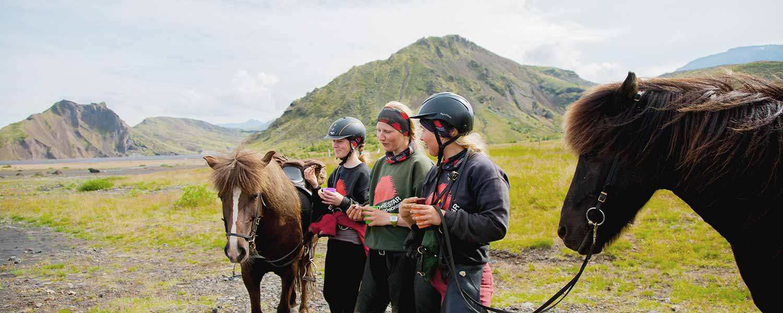 Ridpaus i Islands omväxlande natur