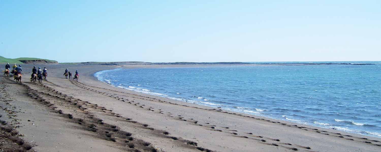 Rider längs sandstranden mot Krýsuvík på Island
