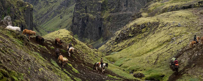 Rider genom höglandet ner längs den vackra ravinen Laxárgljúfur