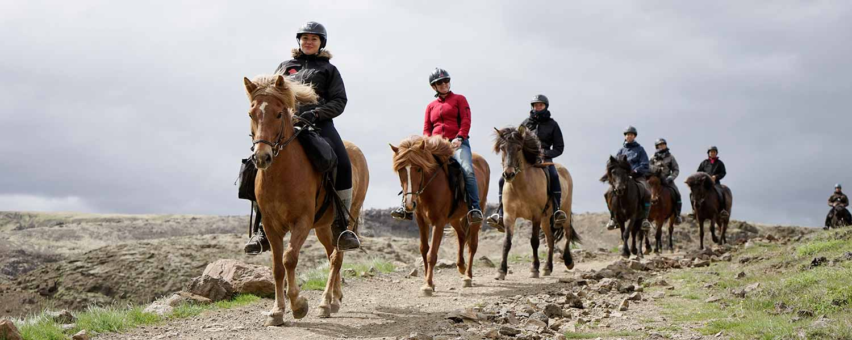 Hela ridsällskapet rider på Islandshästar på berget Ingólfsfjall