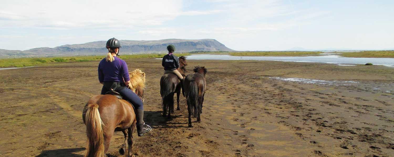 Rider på islandshästar över den svarta lavasanden mot grunt vatten över till den gröna ön Lambey