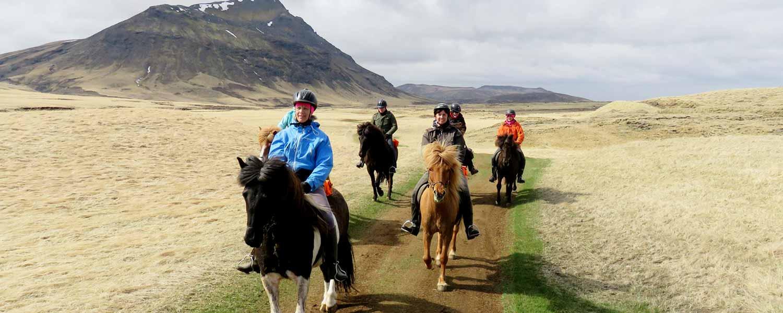 Rider på islandshästar i Heidmörk Naturreservat på Island