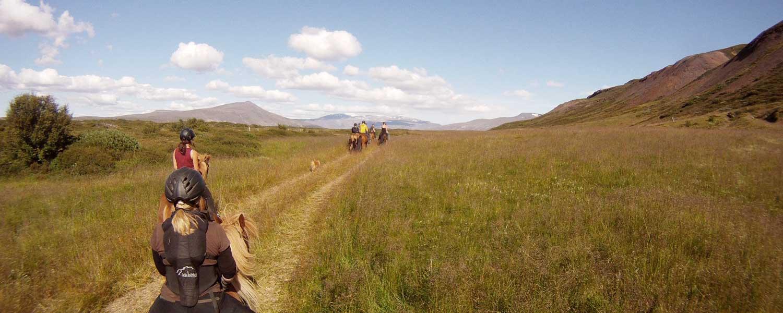Rider på islandshästar mellan vulkaner och berg