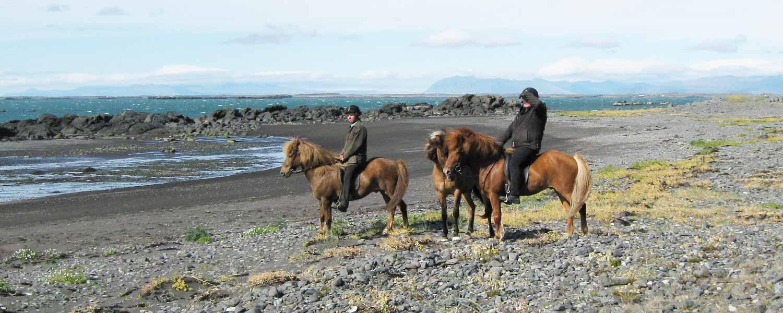 Ryttare på islandshästar med utsikt över Borgarfjörðurfjorden