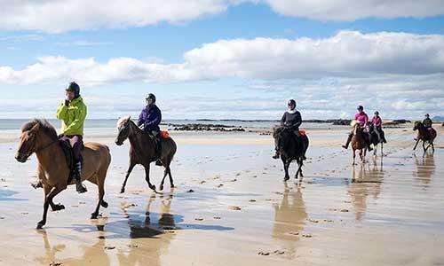 Ryttare rider islandshäst på sandstrand