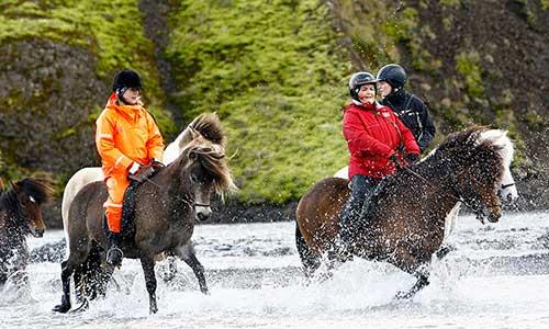 Rider islandshäst i bäck