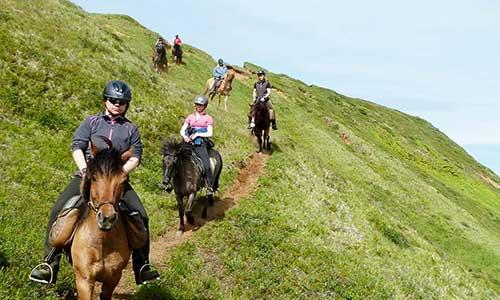 Rider islandhäst efter bergssluttning