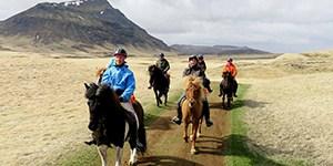 Ryttare på islandhästar
