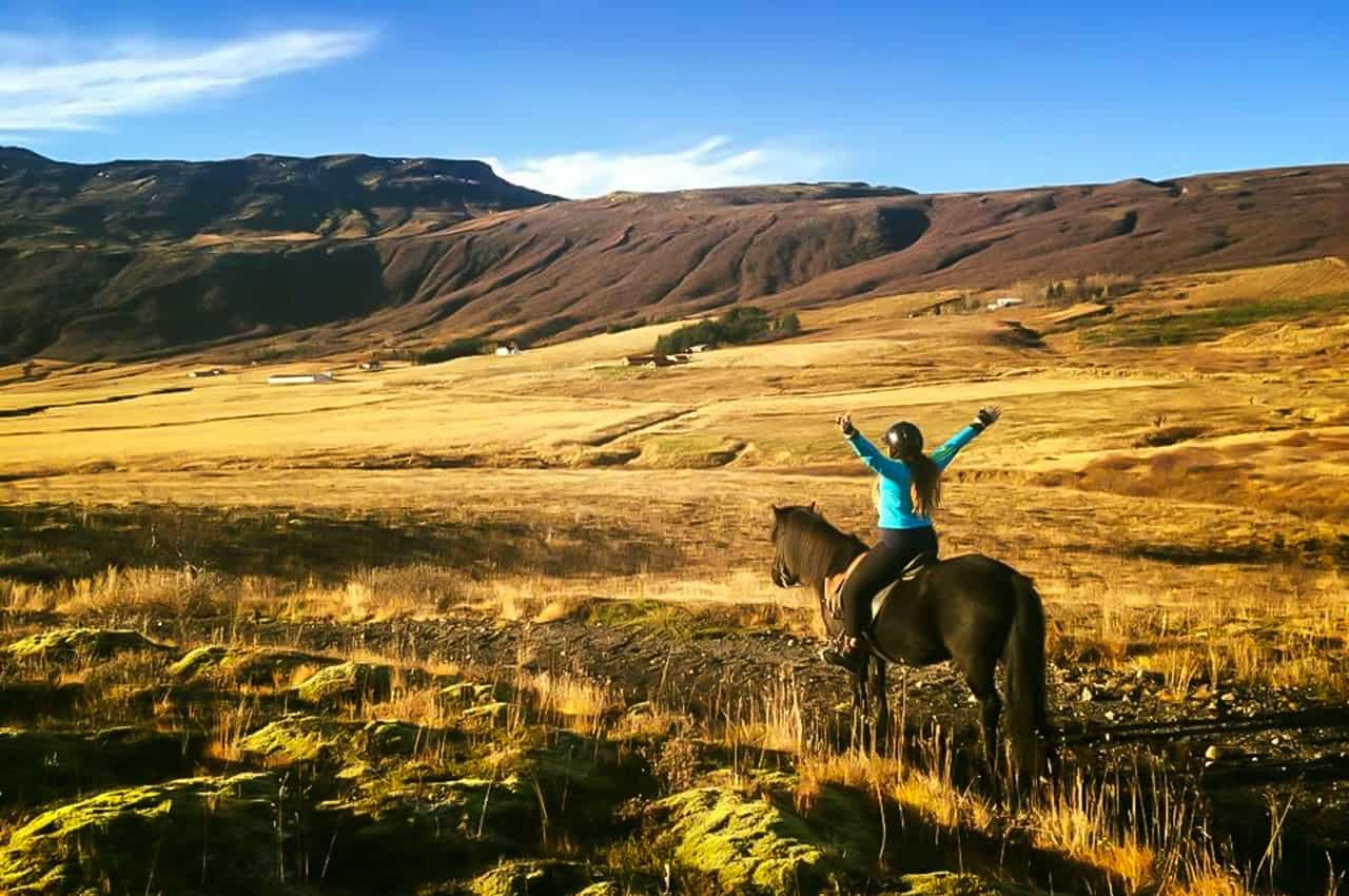 Ryttare med riderfarenhet Island