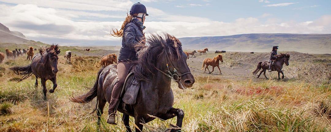 ridresa endast kvinnor viking woman Island
