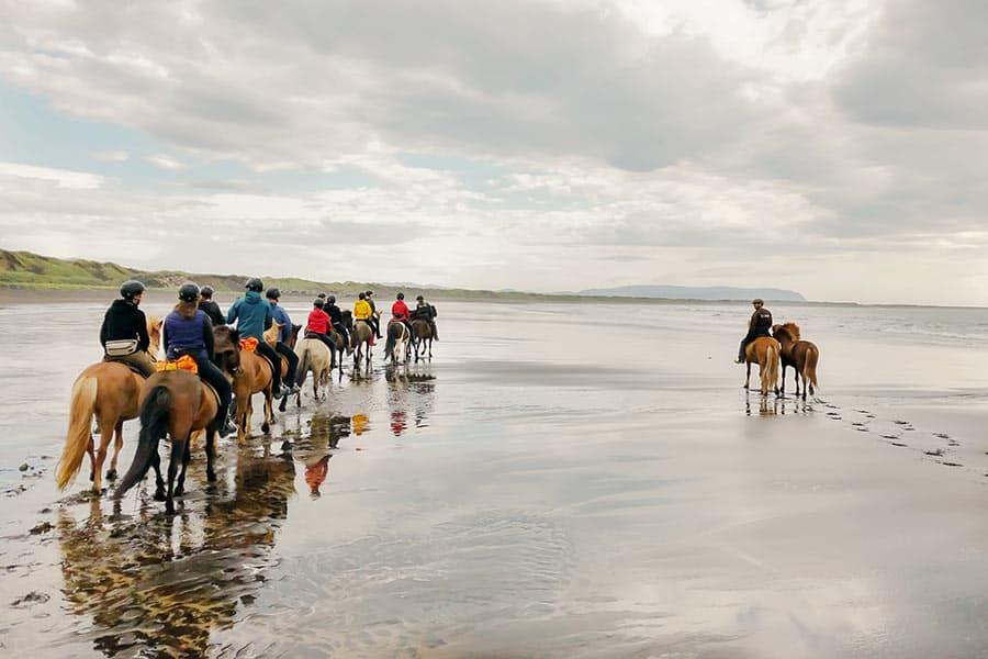 rider islandshäst på stranden