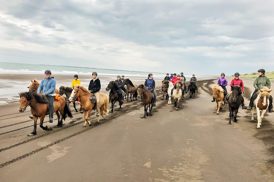 ryttare rider strand på Island